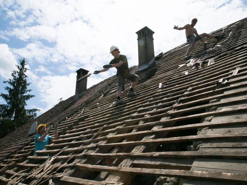 Das Dach, Teil 1